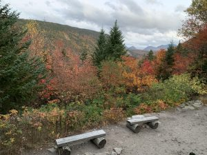 Contest Entry #7 - A Place to Sit - Log benches at a scenic view area with hills and mountains in the distance
