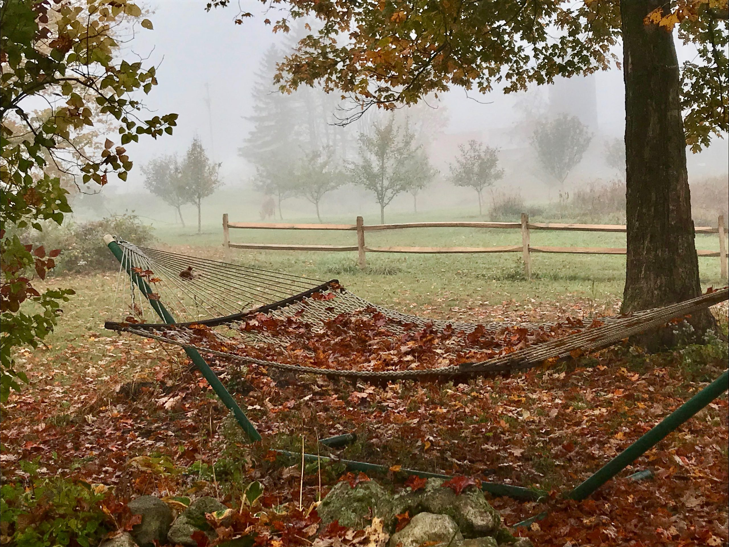 Contest Entry #13 - The Hammock - Photo of Hammock on a stand surrounded by fall leaves with split rail fence and misty apple orchard behind it