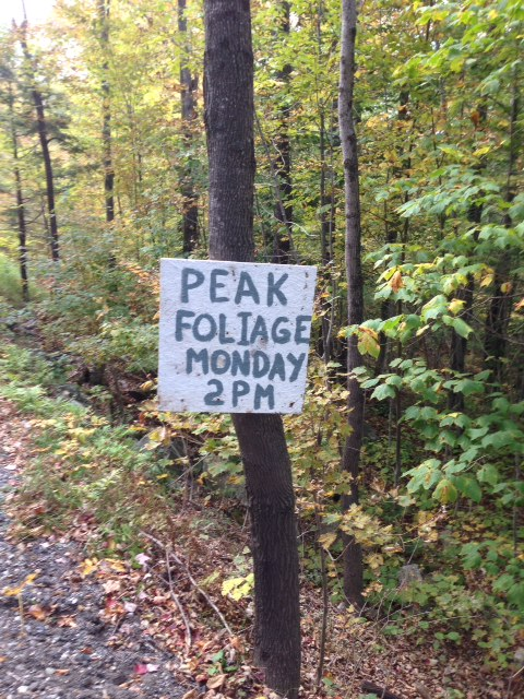 "Contest Entry #5 - Here Comes the Fall - Painted Roadside Sign Reading ""Peak Foliage Monday 2pm"""
