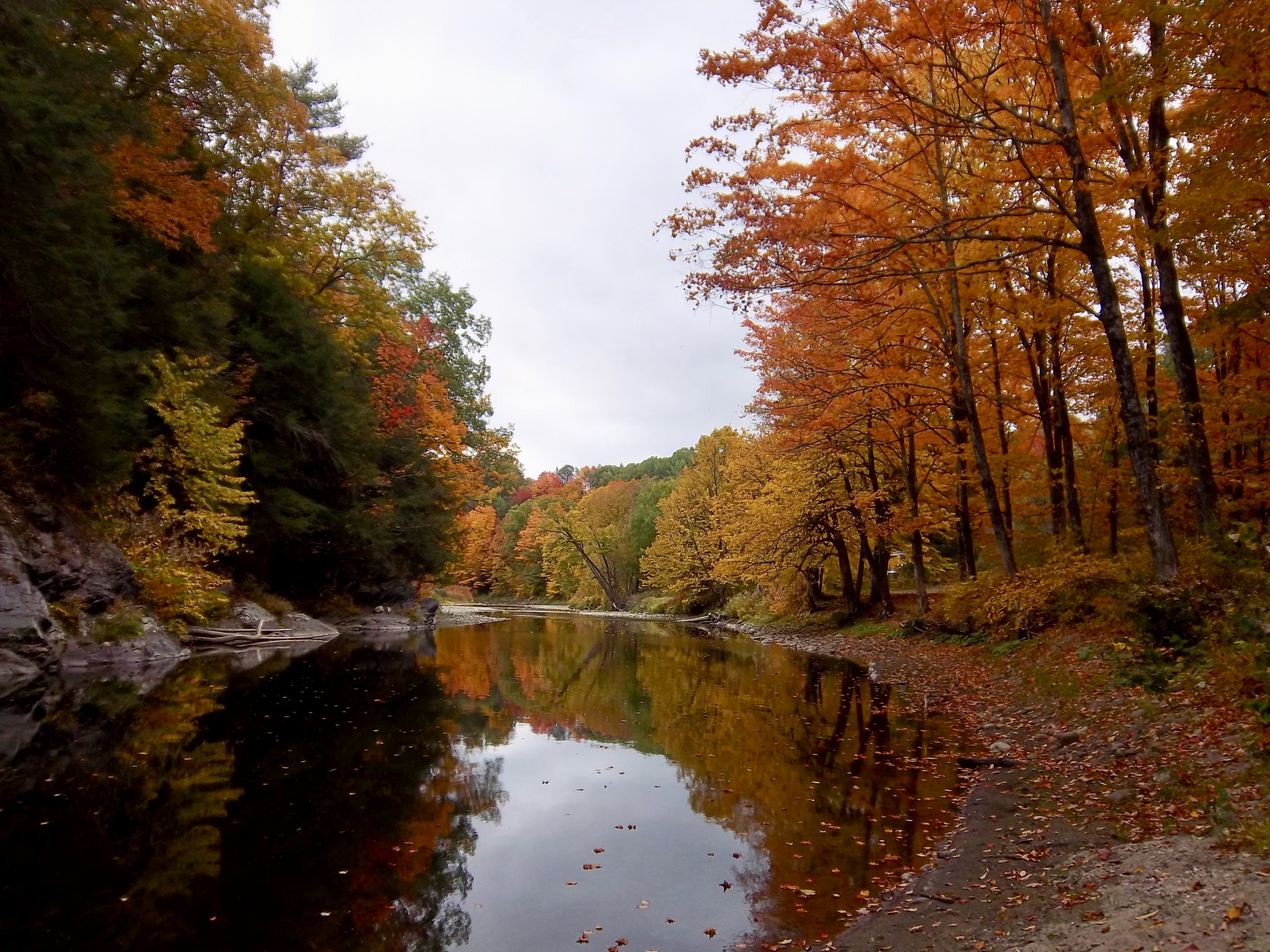Contest Entry #24 - The Waits River - Still water with sandy shoreline reflecting riverbanks of peak foliage trees receding to a background of grey clouds